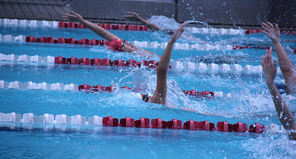 DSA swim team